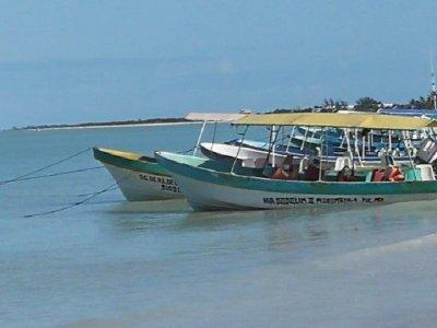 Riparian fishing in Reserva Celestún 4.5 hours