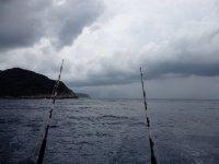 Las cañas de pescar
