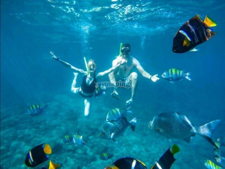 Snorkel Puerto Vallarta