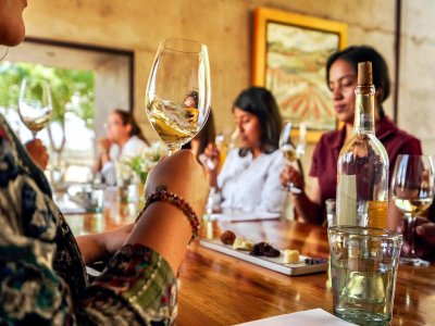 Wine route and tasting in San Miguel de Allende 6h