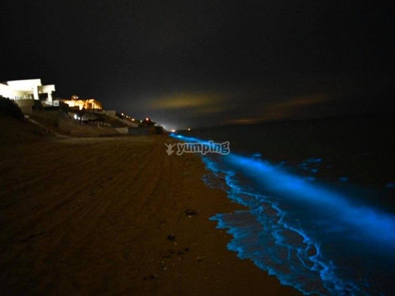 Huatulco bioluminiscencia