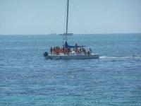 Tour en catamarán