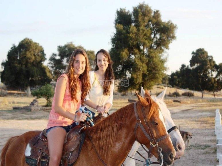 Caballos en Tecate