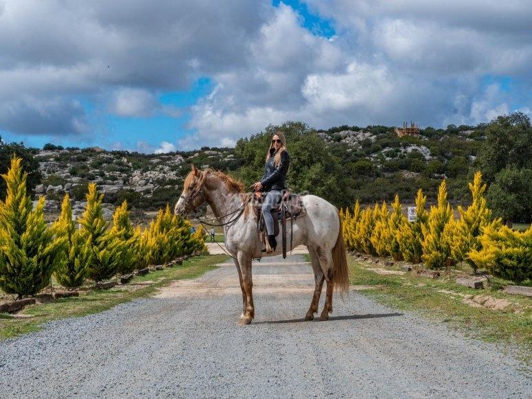 Recorre y disfruta nuestras vistas en un paseo a caballo