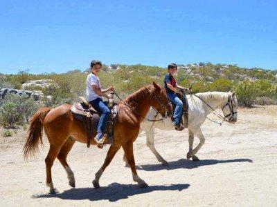 Paseo en caballo cerca de Tecate por 30 minutos