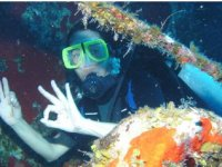 Diving among marine vegetation