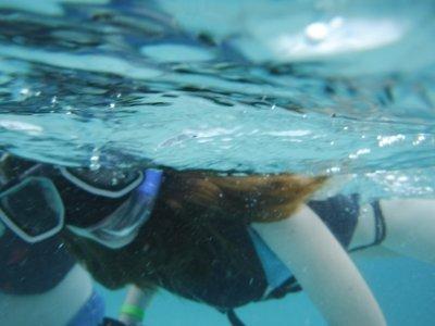 Local Quickies Snorkel