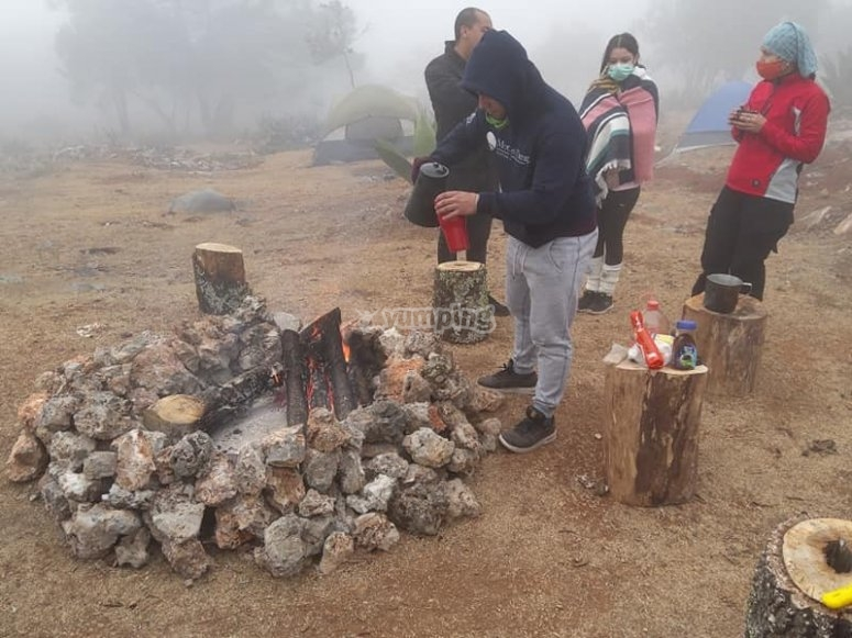 Campfire in the morning