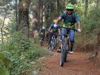 Paseo en bicicleta en bosque de Valle de bravo 3 h