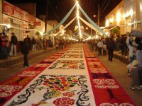 Carpet of Huamantla