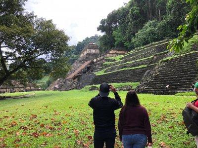 Tour a Palenque desde Villahermosa con transporte