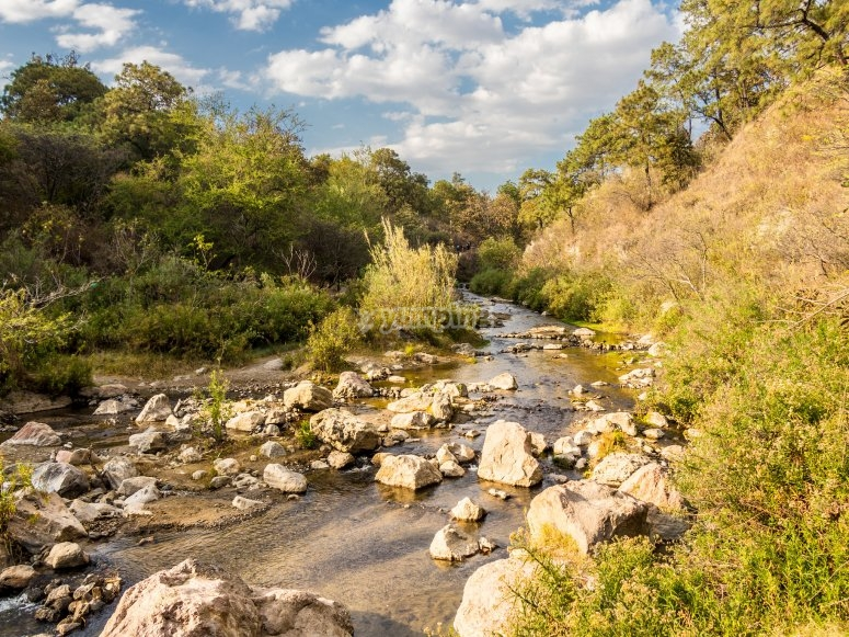 Piedras y ríos