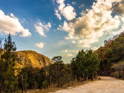 Caminata al Bosque Primavera en Guadalajara 7 hrs