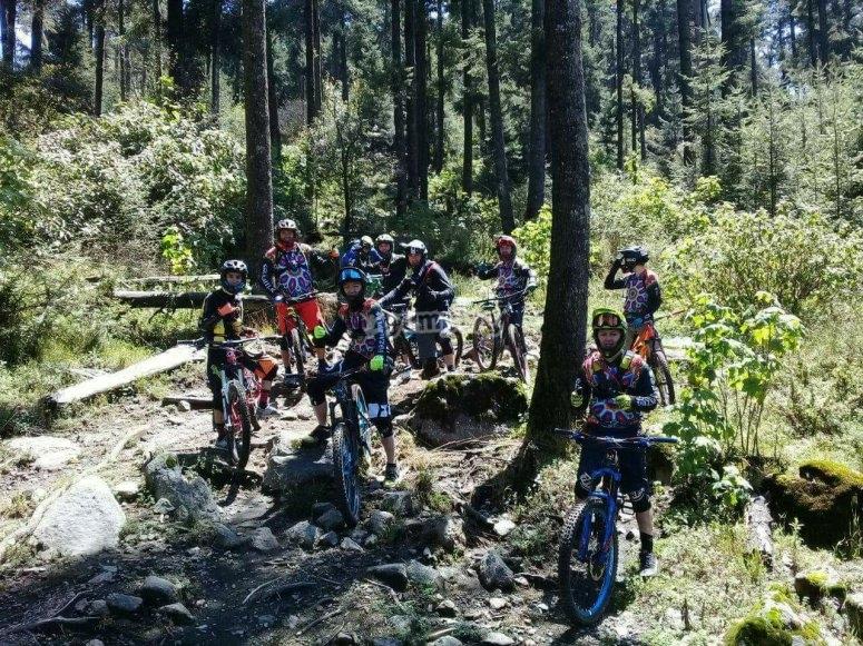 Dentro del bosque en bicicleta