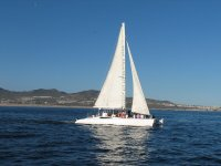 Sailboat Trip