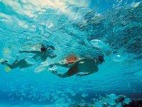 Nichupte Snorkel