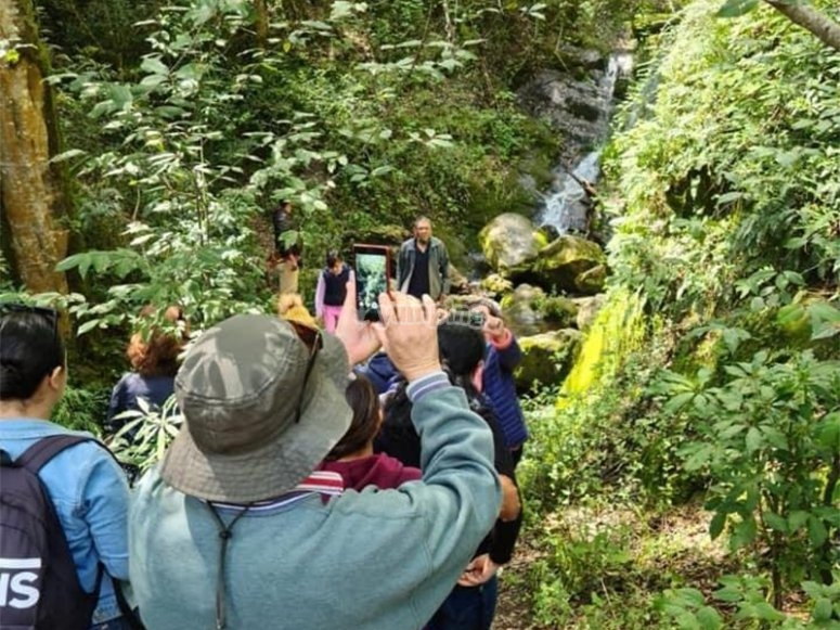 Discover the small waterfalls found in the area