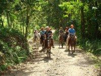 Cabalgata por la Sierra de Mazamitla por 1 hora