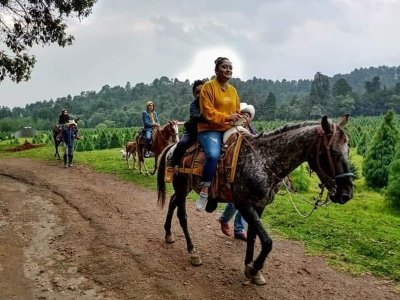 Horse ride in Amecameca forest 30 minutes