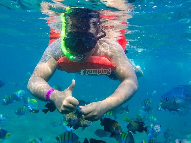 Snorkel en Puerto Vallarta