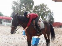Abraza a tu caballo