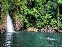 Walk through the jungle in Catemaco for 4 hours