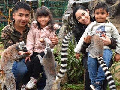 Acceso general a zoológico en Tlalpan por 1 día
