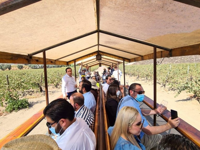Tour the by local transport over the cultivated fields