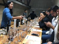 Taste high quality wines on our wine route in Ensenada