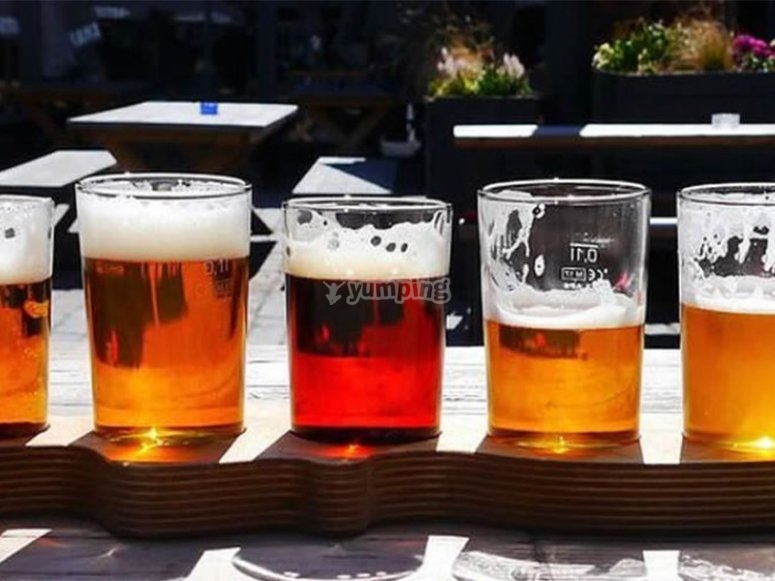 Prueba hasta 11 tipos de diferentes cervezas