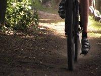 Rodadas ciclistas
