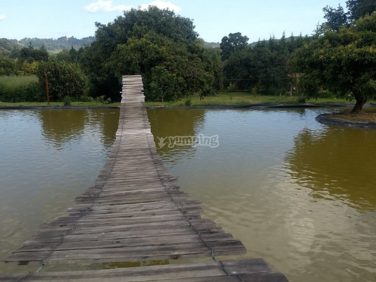 cross the suspension bridge over the lake