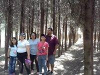 Entrada parque de diversiones en Tetela del Volcán
