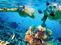 Reefs in Isla Mujeres