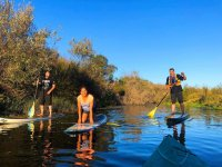 Practicing Paddle Surf