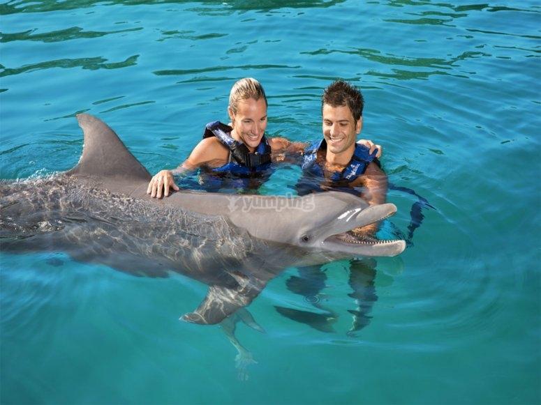Nadando con delfines en Ixtapa Zihuatanejo