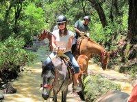 Paseo en caballo en Valle de bravo