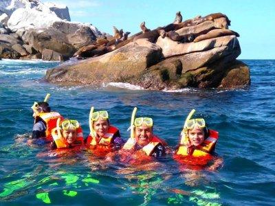 Cabo Pulmo Sport Center Snorkel
