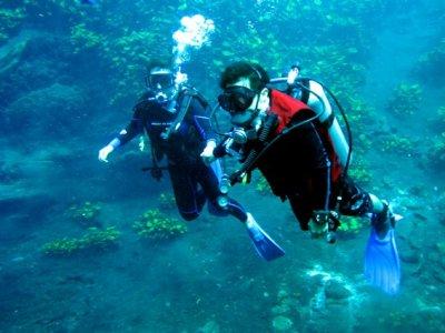 Escuela de Buceo Tiburón