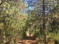 3Km de ruta en el bosque de Valle de Bravo