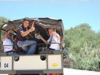 Safaris en jeeps