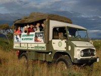 Tourismo de safari