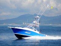 Arrendamiento profesional de los barcos de pesca