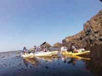 Kayak trip through Arbolitos Cove 1.5 hours