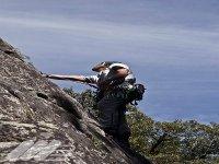 Apprendre à grimper