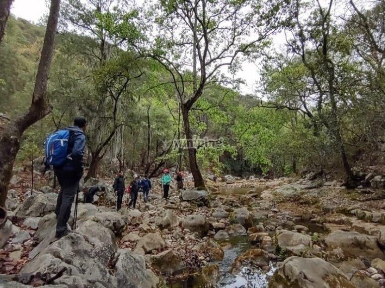 Rocas y ríos