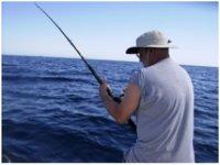 Guia de pesca