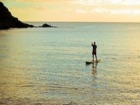 Stand Paddle Up Surf