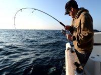 divertidas pescas