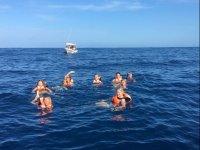 dip in the sea